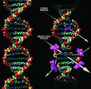 el ADN humano esta mutando