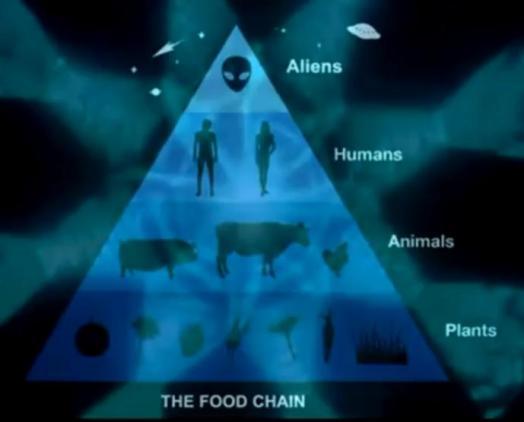 Cadena Alimenticia alien