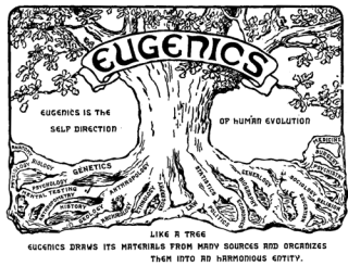 http://teatrevesadespertar.files.wordpress.com/2011/05/eugenismo-unmundoparalaelite-elrestosobra.png?w=320&h=245